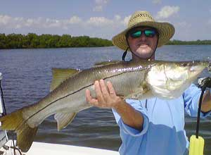 Snook from Everglades Fishing Charter