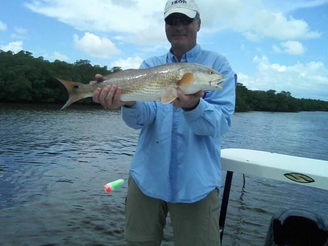 Today s everglades fishing report everglades fishing for Fishing forecast for today